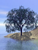 Sand dune tree with reflection. 3d rendered tree on a sand dune at a large lake in the summer Stock Photo