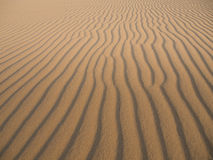 Sand dune. Wave sand at desert in summer Stock Photography