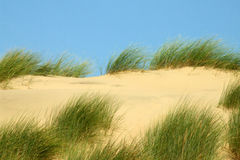 Sand dunes 1. Sand dunes on Britain's North West coast Royalty Free Stock Image