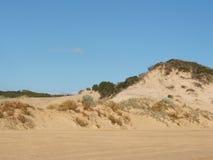 Sand dunes. Beach sand dunes Stock Images