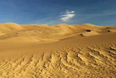 Sand Dunes. Great Sand Dunes National Park and waves of sand Royalty Free Stock Photo