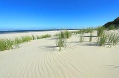 Sand_dunes Imagens de Stock Royalty Free