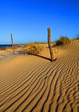 Sand-dunes Stock Images