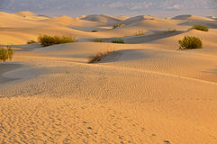 Sand Dunes. In Death Valley National Park Stock Photo