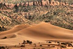 Sand dunes. Coral pink sanddunes state park Stock Photos