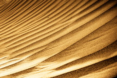 Sand dunes. Warm colored sand dunes. This was taken close to a beach Royalty Free Stock Photo