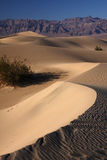 Sand dunes. In the desert (Death Valley national park, California, USA Royalty Free Stock Image