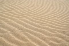 Sand dunes 2 Royalty Free Stock Image