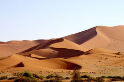 Sand Dunes. Red sand dunes in Namibia, Africa, at sunrise Stock Photo