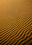 SAND DUNES. Moving dunes are a kind of sand dunes.They characterize that smaller grains, appearing in a small quantity in the sea sand are usually blown off from Royalty Free Stock Image