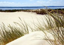 Free Sand Dunes Stock Images - 2110584