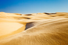 Sand dunes. Of pismo beach, California Royalty Free Stock Photography