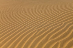 Sand dunes. Sand patterns in the Thar desert dunes in India Royalty Free Stock Photo