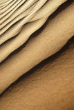 Sand dunes. In the sahara desert Stock Image