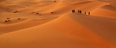 Among the sand dunes Royalty Free Stock Image