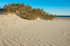 Sand Dunes. Beautiful Sand Dunes on a Clear Sunny Day stock photos