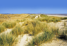 Free Sand Dunes Royalty Free Stock Photography - 2485907