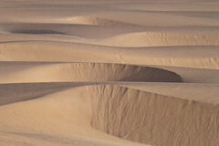 Sand Dunes. In morning time stock photos