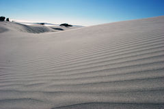Sand dunes. In the beach of baja stock photo