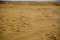 Sand dunes. Desert landscape with tire and foot tracks in Sahara sand dunes Stock Image