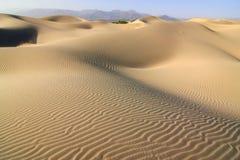 Sand dunes Royalty Free Stock Image