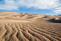 Sand dunes. In the early morning in Colorado Royalty Free Stock Image