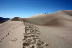 Sand Dunes Stock Images
