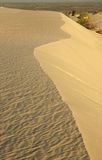 Sand Dunes. At Sunset royalty free stock photos