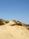 Sand Dunes. With grass Stock Photo