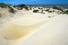 Sand dunes. On Lamu island,eastern Kenya Stock Photography