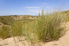 Sand Dunes. Sand dune nature reserve on the North West coast of England royalty free stock image