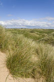 Sand Dunes. Sand dune nature reserve on the North West coast of England Stock Image