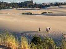 Free Sand Dunes Stock Photo - 78086860