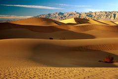SAND DUNES. In Death Valley , California Royalty Free Stock Photo