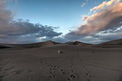 Sand Dunes along the Amargosa Desert at sunset Stock Images