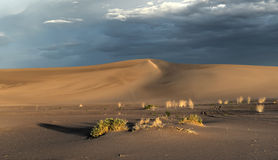Sand Dunes along the Amargosa Desert at sunset Stock Photos