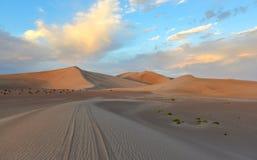 Sand Dunes along the Amargosa Desert at sunset Stock Photo