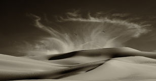 Sand Dunes Along the Border Royalty Free Stock Photo