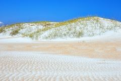 Sand Dunes along the Crystal Coast of North Carolina. Sand dunes at Fort Macon State Park, located near the resort town of Atlantic Beach along the Crystal Coast royalty free stock photo