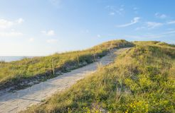 Sand dunes along the north sea coast below a blue sky in sunlight stock photo