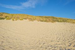 Sand dunes along the north sea coast below a blue sky in sunlight stock images
