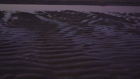 Sand dunes as background close up shot. Sunset stock video footage