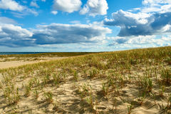 Free Sand Dunes At Cape Cod Stock Photography - 75674202
