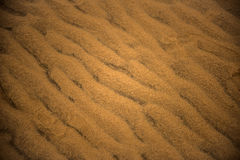 Sand Dunes Royalty Free Stock Photo