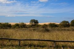 Sand dunes in the background of a field royalty free stock images