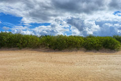 Sand dunes of the Baltic Sea Stock Photography
