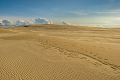 Sand dunes Baltic Sea nature Stock Photo