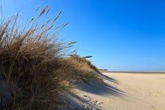 Sand dunes on the beach Stock Photos