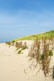Sand dunes at the beach Stock Image