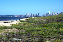 Sand Dunes on beach against City Skyline Stock Photos